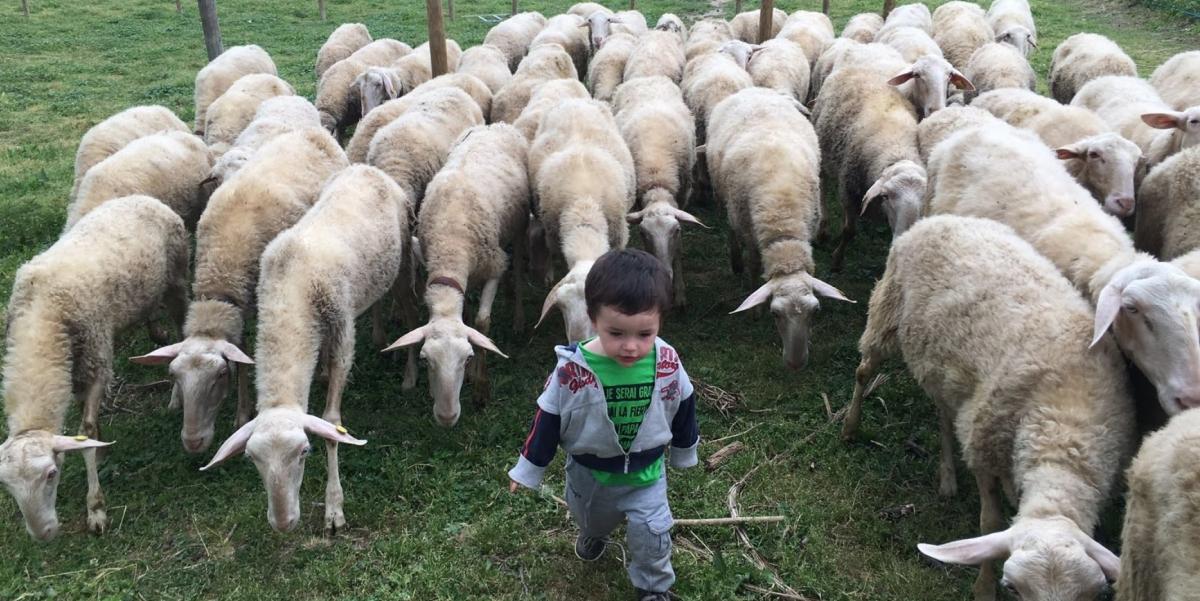 campi estivi bambini ragazzi