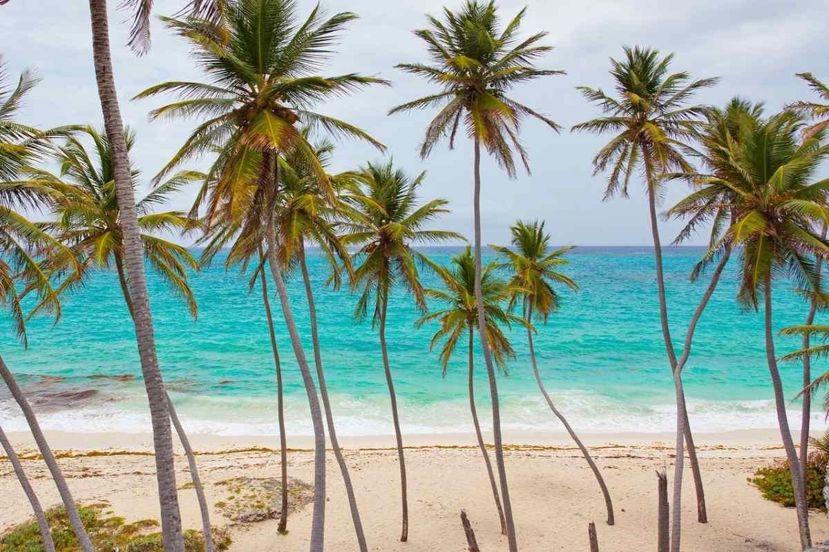 Capodanno ai Caraibi con i bambini