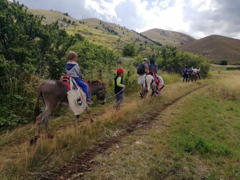 Family Trekking con asini alle falde del Gran Sasso