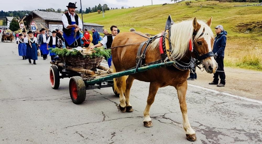 La nostra vacanza sull'Alpe di Siusi: un bellissimo weekend in Trentino, in gruppo con altre famiglie!