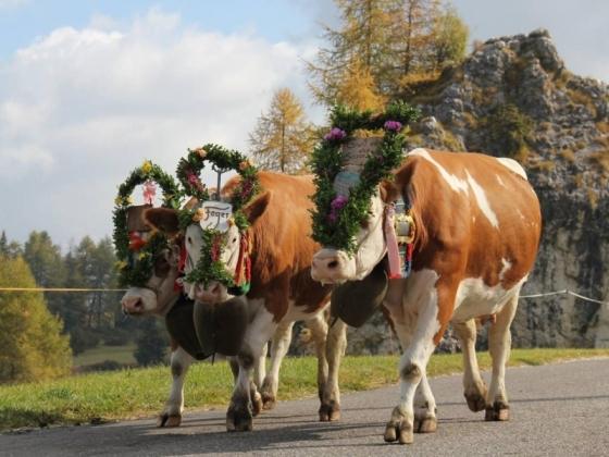 Montagna per bambini: Alpe di Siusi in Alto Adige