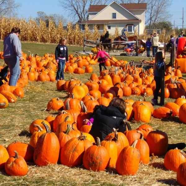 irlanda inglese famiglie all halloween