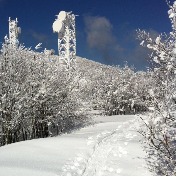 piccoli esploratori sulla neve