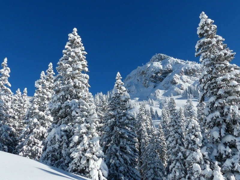 Speciale settimana bianca in family hotel in Val di Fassa