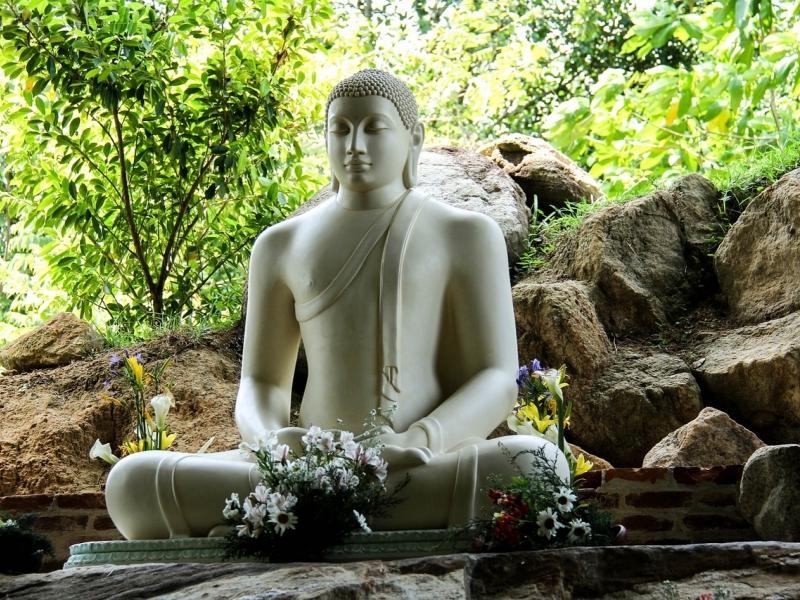 Tour di gruppo per famiglie in Sri Lanka