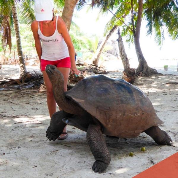 viaggi gruppo alle seychelles